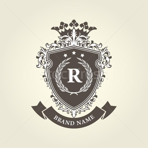 Médiévale royal manteau bras bouclier couronne Photo stock © gomixer