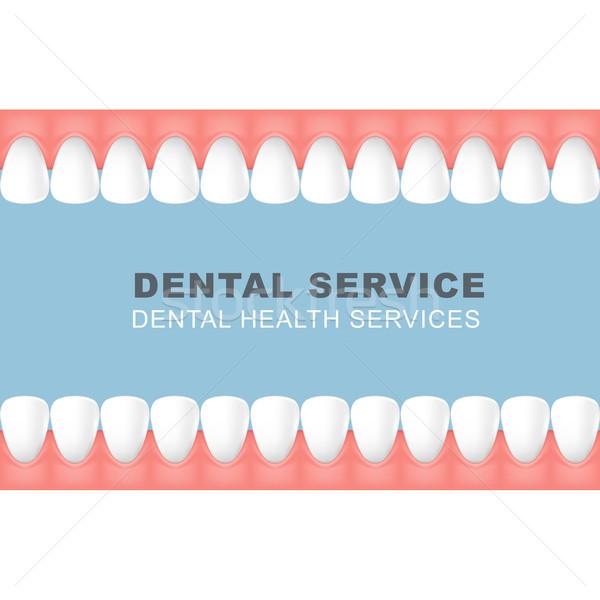Tandheelkundige poster frame rij tanden lijn Stockfoto © gomixer