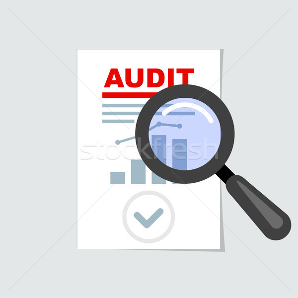 Auditing icon - magnifier on report, audit concept Stock photo © gomixer