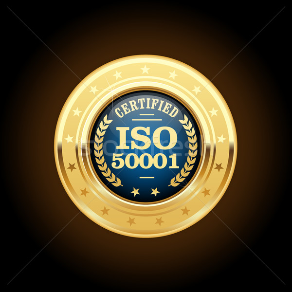 ISO 50001 standard medal - Energy management Stock photo © gomixer