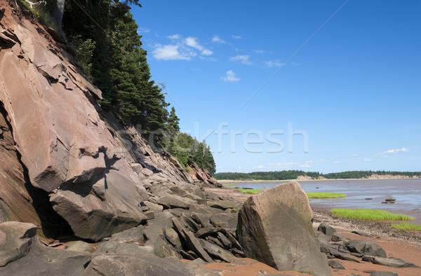 Beach Shoreline Stock photo © Gordo25