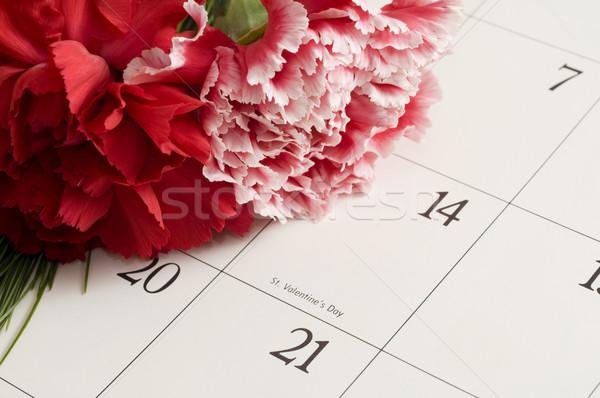Bouquet Blumen Stock foto © Gordo25