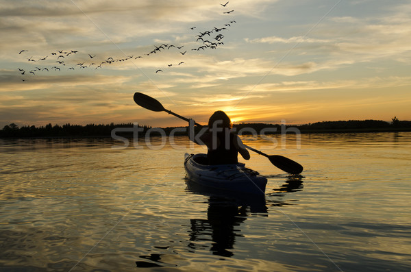 Woman Kayaking at Sunset on Lake Ontario Stock photo © Gordo25