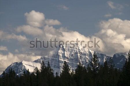 Edith Cavell Mountain Stock photo © Gordo25