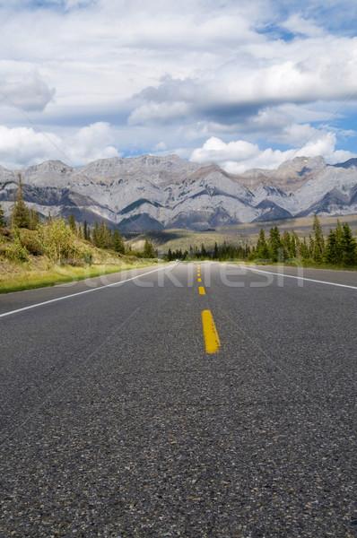 Weg bergen selectieve aandacht voorgrond leidend Stockfoto © Gordo25