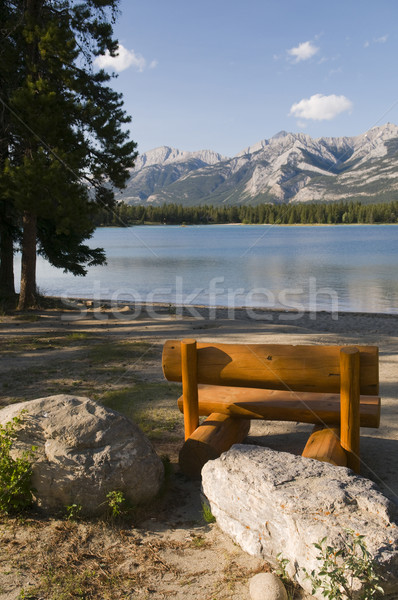 скамейке озеро соснового берега парка пляж Сток-фото © Gordo25