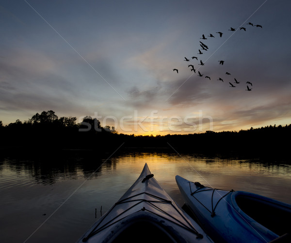 Geese and Kayaks at Sunset Stock photo © Gordo25