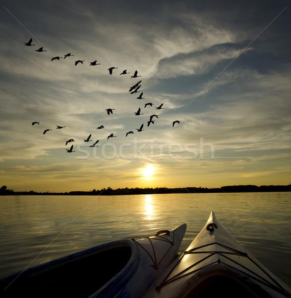 Kayaks at Sunset with Geese Landing Stock photo © Gordo25