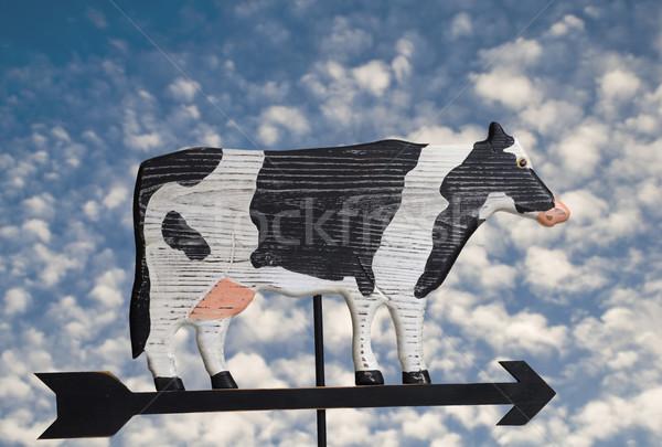 Cow Weather Vane Stock photo © Gordo25