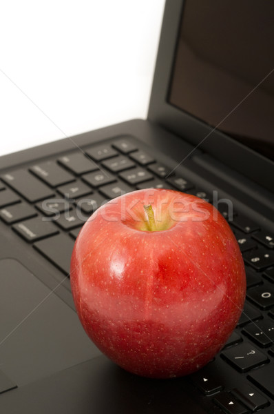 Appel laptop rode appel gezondheid Stockfoto © Gordo25