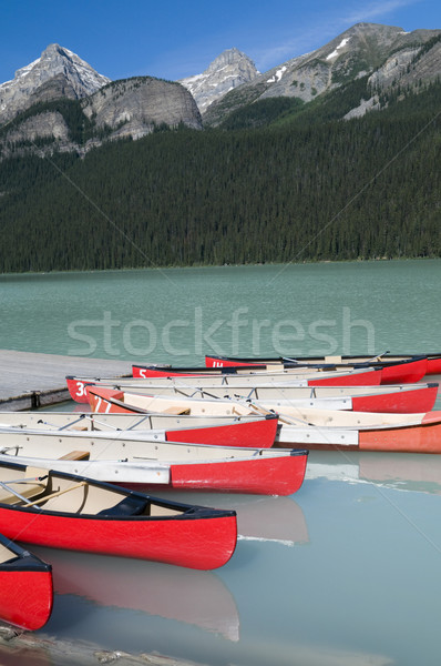 Meer hemel water hout bos natuur Stockfoto © Gordo25