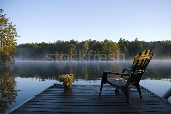 午前 霧 表示 ドック 森林 自然 ストックフォト © Gordo25