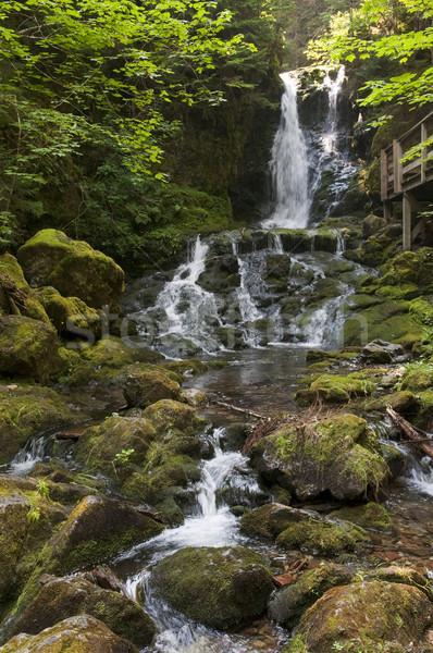 Waterfall Stock photo © Gordo25