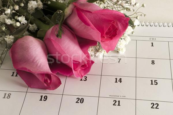 Three Roses on Calender Stock photo © Gordo25