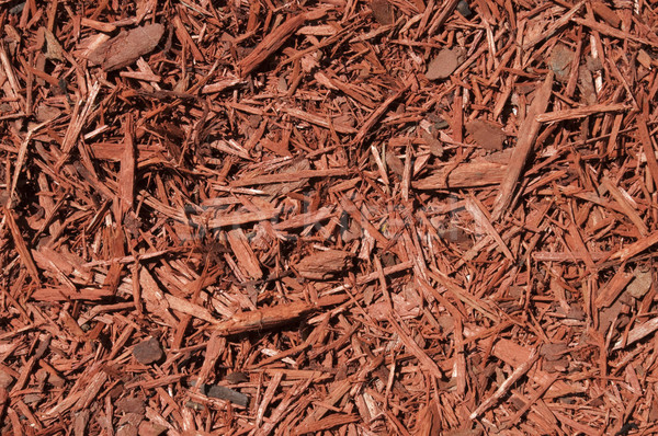 Red Cedar Mulch Background Stock photo © Gordo25