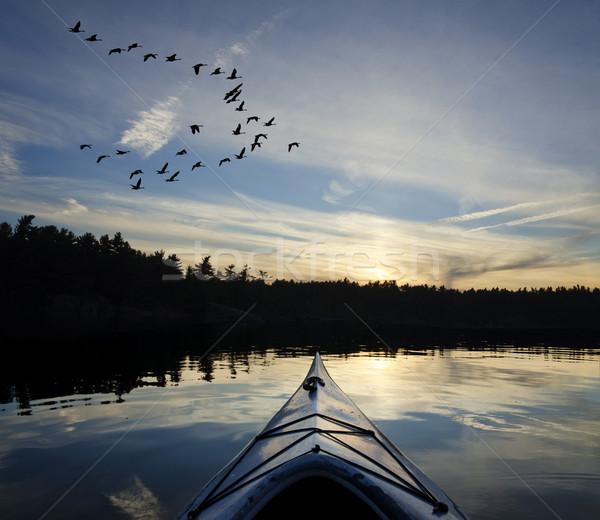 байдарках гусей закат озеро глядя солнце Сток-фото © Gordo25