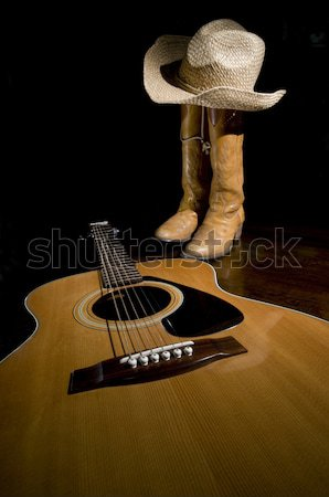 Country Music Spotlight Stock photo © Gordo25