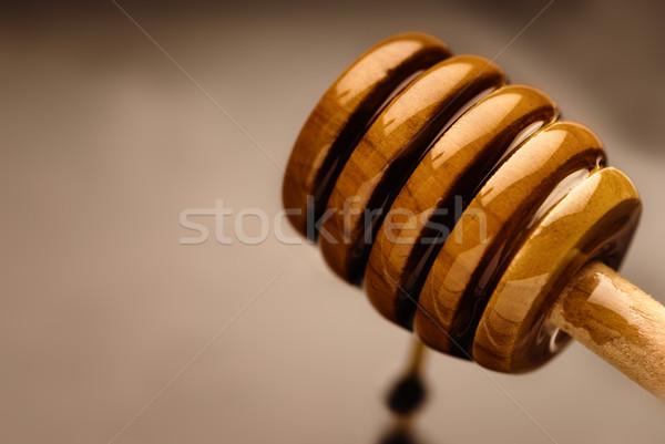 Bee nectar Stock photo © gorgev