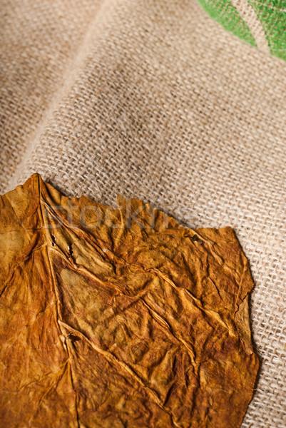 Crudo tabaco secar primer plano rural hoja Foto stock © gorgev