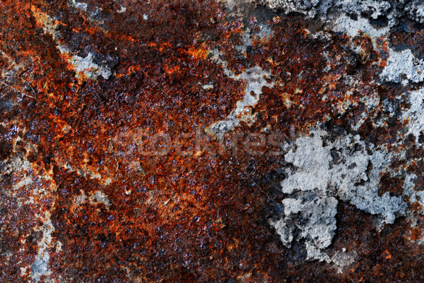 Rusty placa metal primer plano textura resumen Foto stock © gorgev