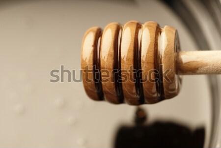 Focus blur honey Stock photo © gorgev