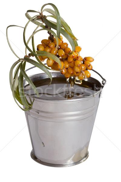 Oil of sea-buckthorn berries. Stock photo © Goruppa