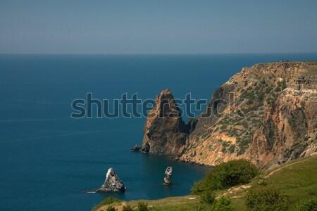 Wild coast of Black sea Stock photo © Goruppa