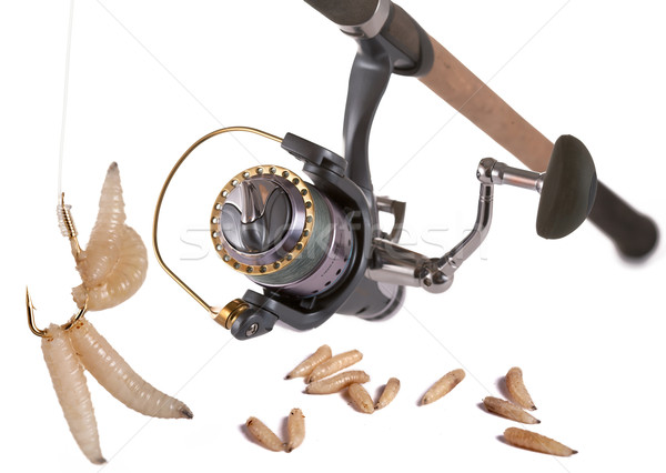 Good bait for fishing. Stock photo © Goruppa