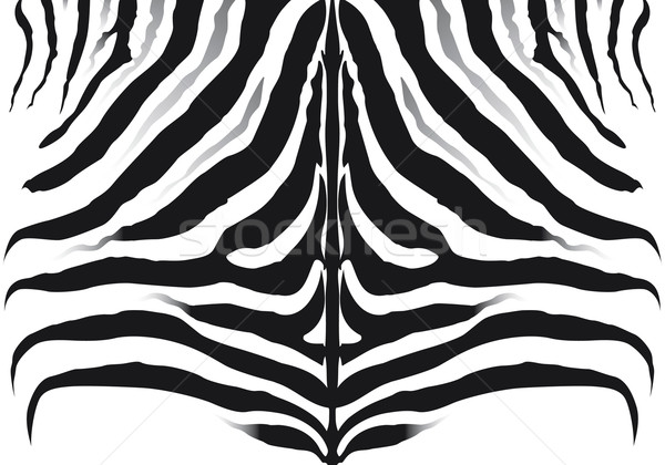 зебры шаблон текстуры природы фон кожи Сток-фото © Grafistart