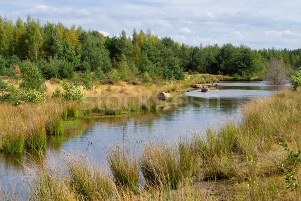 Water stream Stock photo © Grafistart