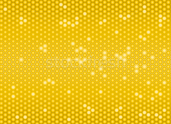 Golden cells of a honeycomb  Stock photo © Grafistart