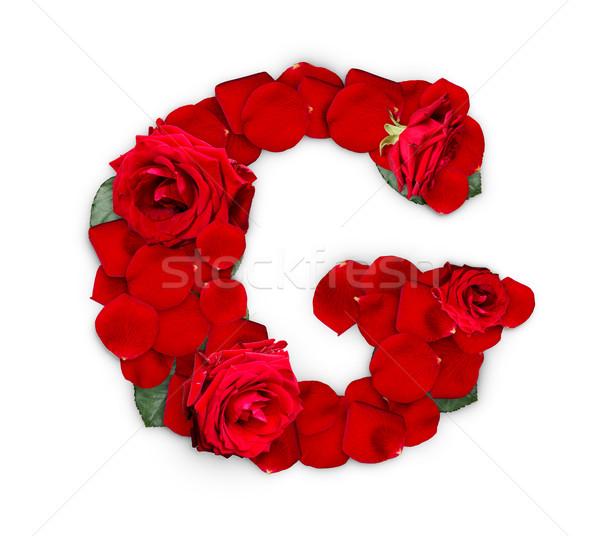 G betű vörös rózsák szirmok izolált fehér virág Stock fotó © grafvision