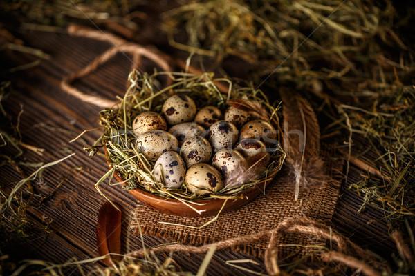Quail eggs  Stock photo © grafvision