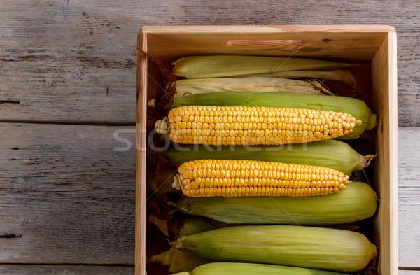 Corn on the cob Stock photo © grafvision