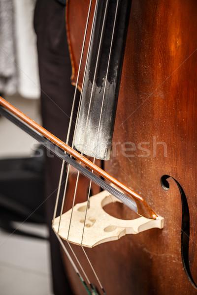 çift bas köprü dizi ses Stok fotoğraf © grafvision
