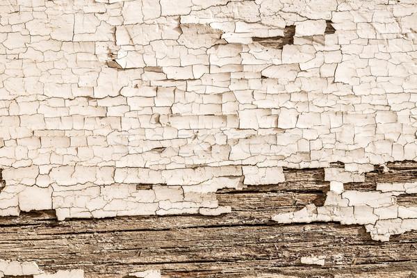 Tapasz fa sérült ház fal védtelen Stock fotó © grafvision