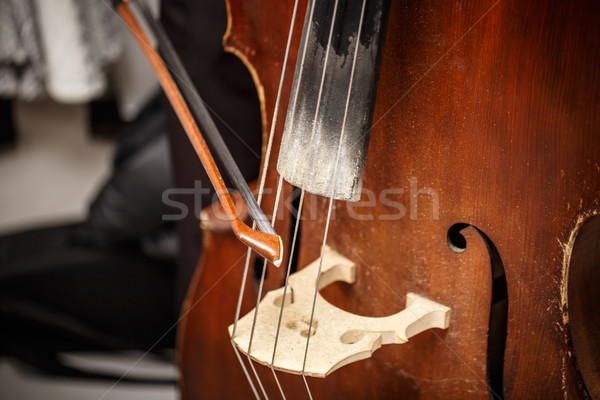Stock photo: Double bass, wooden musical instrument