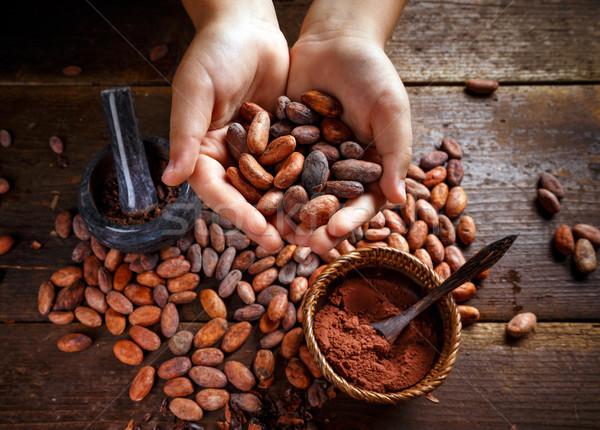 Cocoa beans Stock photo © grafvision