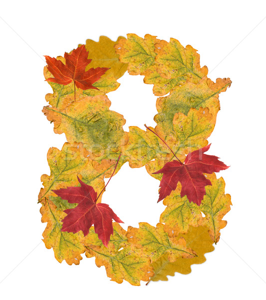 Number of autumn leaves . Number 8 Stock photo © grafvision