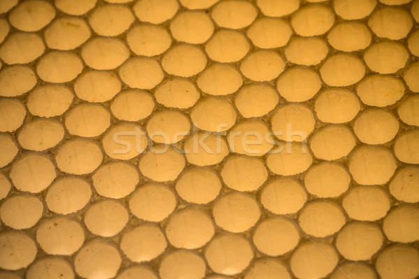 Méhsejt közelkép lövés narancs arany minta Stock fotó © grafvision