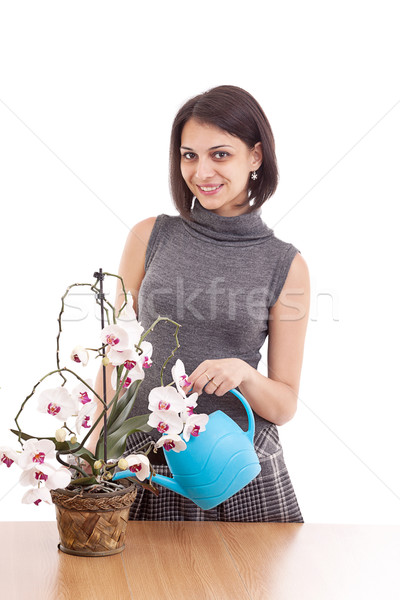 Woman irrigate orchid Stock photo © grafvision
