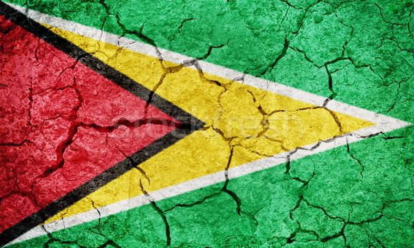 Köztársaság Guyana zászló száraz Föld föld Stock fotó © grafvision