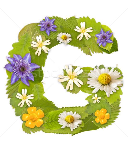 Yeşil yaprak çiçek beyaz mektup g ağaç Stok fotoğraf © grafvision