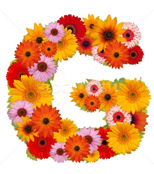 çiçek mektup alfabe yalıtılmış beyaz mektup g Stok fotoğraf © grafvision
