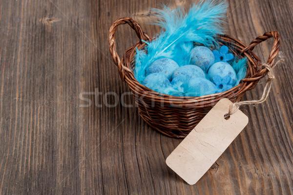 Blue quail eggs Stock photo © grafvision