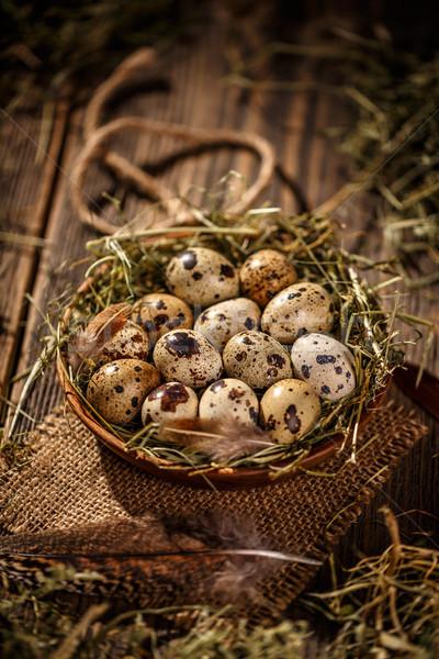 Eieren hooi nest donkere oude houten Stockfoto © grafvision