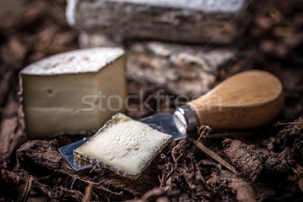 Soft cheese slice  Stock photo © grafvision
