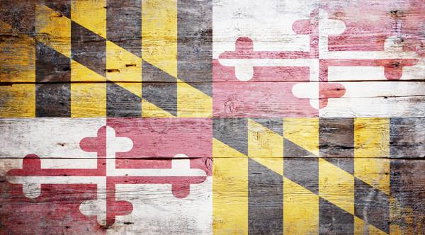 Flag of Maryland Stock photo © grafvision