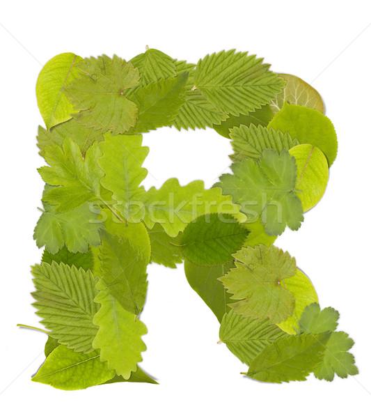 緑色の葉 手紙 フォント 白 手紙r ツリー ストックフォト © grafvision
