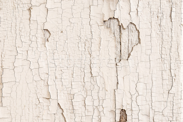 Rachado gesso parede abstrato velho textura Foto stock © grafvision
